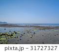 姫島 みつけ海岸 31727327
