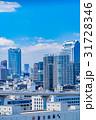 《東京都》白い雲と都市風景《初夏》 31728346