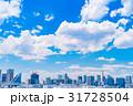 《東京都》白い雲と都市風景《初夏》 31728504