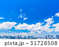 《東京都》白い雲と都市風景《初夏》 31728508