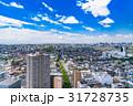 《東京都》初夏の街並みと夏空 31728735