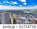 《東京都》初夏の街並みと夏空 31728736