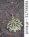 鉛の再利用(ナマリ)道具 31736684