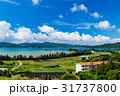 沖縄県 屋我地島 沖縄の風景 31737800