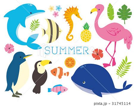 夏の動物イラストのイラスト素材 31745114 Pixta