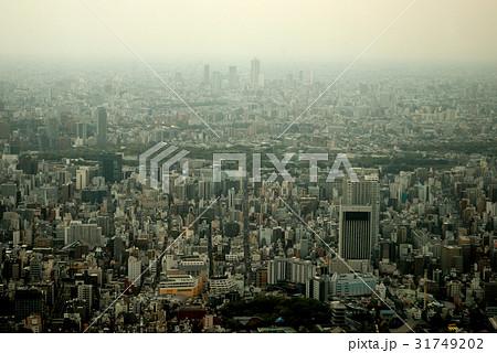スカイツリーから見た東京の景色01 31749202