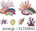 紅型風沖縄の海の生物セット-サンゴと貝 31749641
