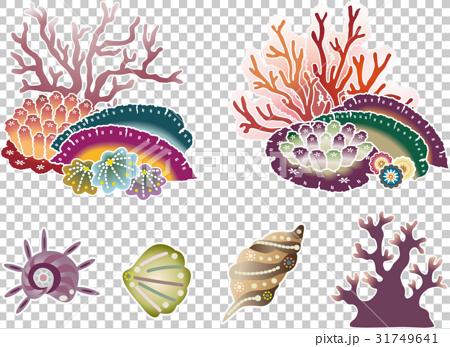 Crimson style sea life set of Okinawa - coral and shellfish 31749641