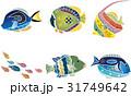 紅型風沖縄の海の生物セット-熱帯魚 31749642