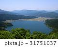風景 自然 琵琶湖の写真 31751037