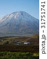 羊蹄山 蝦夷富士 雪山の写真 31751741