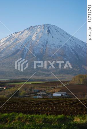 雄大な蝦夷の富士羊蹄山02 31751741