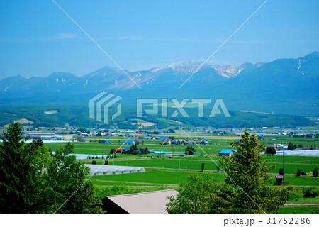 北海道富良野の広大な風景 31752286