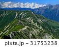 槍ヶ岳 夏山 風景の写真 31753238