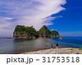 西伊豆 堂ヶ島 瀬浜海岸の写真 31753518