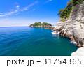 堂ヶ島 西伊豆 海の写真 31754365