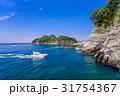 堂ヶ島 西伊豆 海の写真 31754367