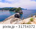 堂ヶ島 西伊豆 海の写真 31754372