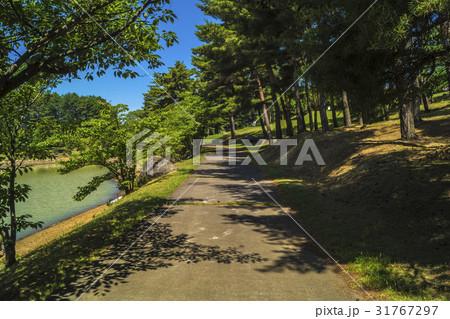 信州・長野県東御市八重原芸術むら公園の明神池沿いの散策路 31767297