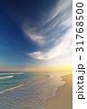 海 トロピカル 熱帯の写真 31768500