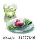 緑茶 グリーンティー 水まんじゅうのイラスト 31777846