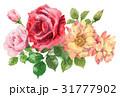 ローズ 花 赤のイラスト 31777902