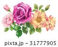 ローズ 手描き バラのイラスト 31777905