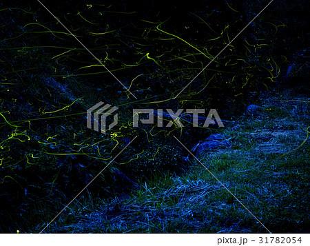 月夜野ホタルの里 31782054