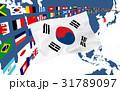 韓国国旗と地図 31789097