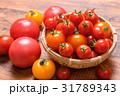 トマト ミニトマト 野菜の写真 31789343