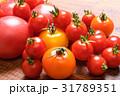 トマト ミニトマト 野菜の写真 31789351