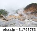 登別地獄谷 支笏洞爺国立公園 31795753