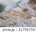 登別地獄谷 支笏洞爺国立公園 31795754