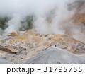 登別地獄谷 支笏洞爺国立公園 31795755