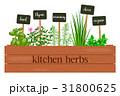 クッキング 料理 調理のイラスト 31800625