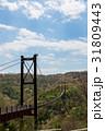 星のブランコ ほしだ園地 吊り橋の写真 31809443