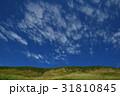 空 青空 秋の写真 31810845