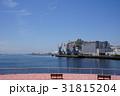 千葉港 海 港の写真 31815204