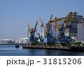 千葉港 クレーン 海の写真 31815206