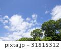 青空 初夏 雲の写真 31815312