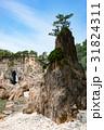 海岸 笹川流れ 天然記念物の写真 31824311