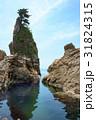 海 海岸 笹川流れの写真 31824315