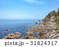 海 海岸 笹川流れの写真 31824317
