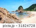 夏 海 笹川流れの写真 31824728