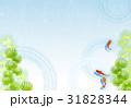 金魚と水草【和風背景・シリーズ】 31828344