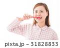 歯みがき 女性 31828833