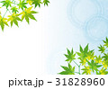暑中見舞い【和風背景・シリーズ】 31828960