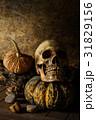 生命 生活 かぼちゃの写真 31829156