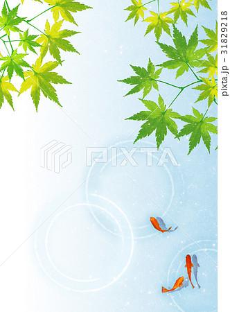 金魚と青紅葉【和風背景・シリーズ】 31829218