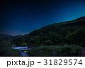 蛍 ホタル ゲンジボタルの写真 31829574